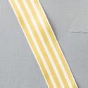 summer starfruit ribbon