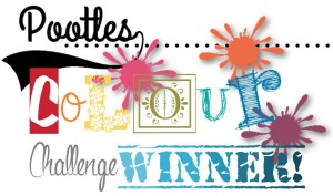 pootles-colour-challenge-winner-300x177